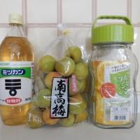 夏バテを予防する梅ジュース! 南高梅と黒砂糖での作り方