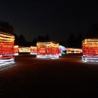 昭和記念公園のイルミネーション2016 ライトアップの時間と冬の花火はいつ?