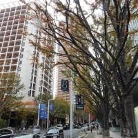 六本木けやき坂イルミネーション2016と玩具の様な公園が子連れに人気!