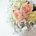 卒業式に贈る花の値段はどれくらいか!1輪の値段と花言葉で選ぶなら!
